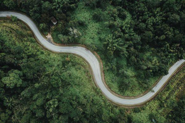 road between trees aerial image
